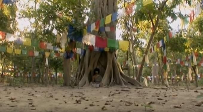 Bez hnutí seděl v kořenech stromu a meditoval.