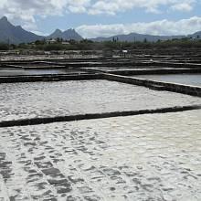 Městečko Tamarin je proslulé produkcí soli z mořské vody.