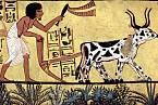 Prvotní popisy neobvyklých tělesných projevů pocházejí ze starověkého Egypta.