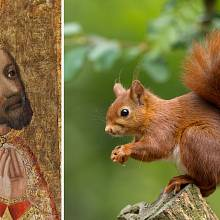 Za časů Karla IV. šlechta jedla všechno, co běhalo po lese. Třeba i veverky.