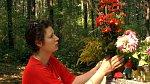 Helena Čermáková pokládá květiny v lese, kam odnesla dceru