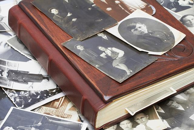 genealogie, ilustrační foto