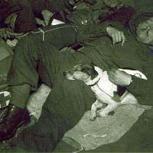 """Ilustrátor vojenských Našich novin """"četař Jituš"""", alias Jindřich Křeček-Jituš, odpočívá v podpalubí lodi během transportu československých vojáků"""