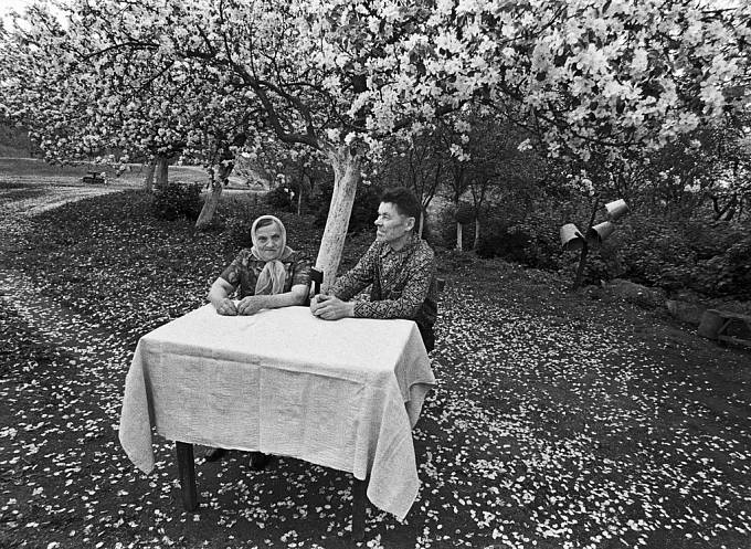 Rakauskas, Blossoming, 1974–1984