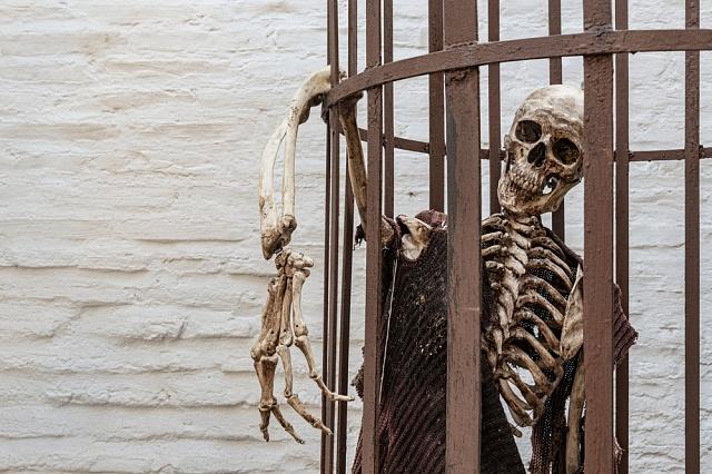 Popravení zločinci byli zavěšováni vklecích pro výstrahu ostatním.