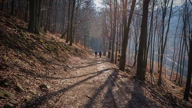 Tajemný les na Tribeči