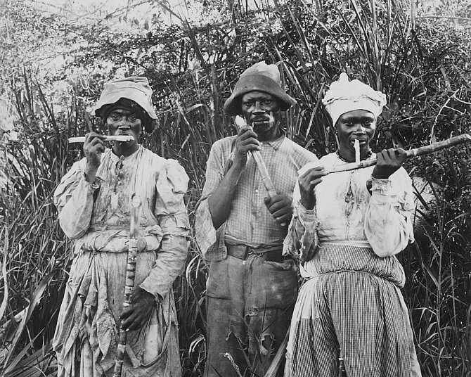 """O zacházení a krutostech prováděných na otrocích se dodnes z hlediska """"politické korektnosti"""" moc nemluví."""