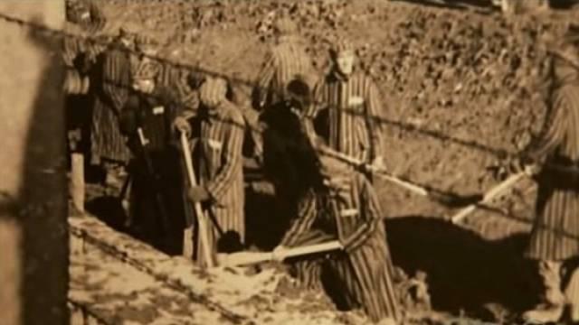 Tvrdě pracující vězni podle Aveyho nemohli v táboře přežít déle jak čtyři měsíce.