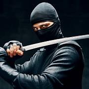 Katany, legendární samurajské meče, jsou dnes spíše sběratelskou záležitostí. Jejich cena se pohybuje od 80 až po 100 000 korun.