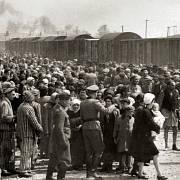 Mengele posílal Magnussen z Osvětimi oči vězňů.