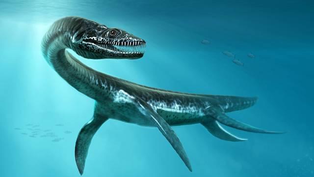 Plesiosaurus prý nebyl schopen vystrčit hlavu nad hladinu.