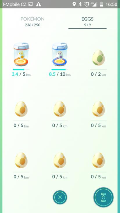 vejce v inkubátorech