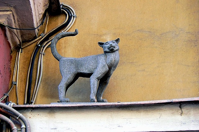 Kočky zachránily Leningrad před zkázou