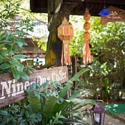 Krom kavárny a restaurace provozuje pan One jak u cesty mezi Chiang Mai a Chiang Rai, tak přímo na farmě několik chatek a bungalowů, kde se můžete na několik dní ubytovat a zažít si život v džungli a na kávové farmě.