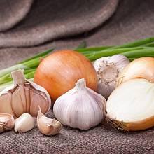 Repelentní účinky mají hlavně aromatické potraviny.