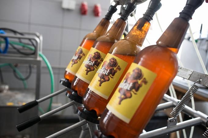 Jednou ze značek nabízených pivovarem je pivo Pazdrát