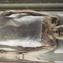 Mumie Lady Dai se našla v překvapivě zachovalém stavu.