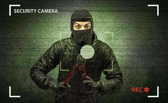 Lupič zachycený bezpečnostní kamerou - ilustrační foto