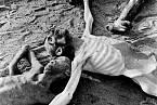 Mrtví v Bergen-Belsen
