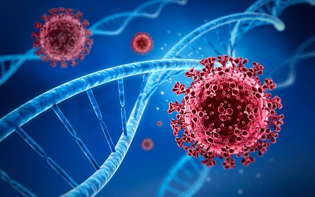 Neandertálské geny jsou spojeny srizikem těžšího průběhu onemocnění Covid-19.