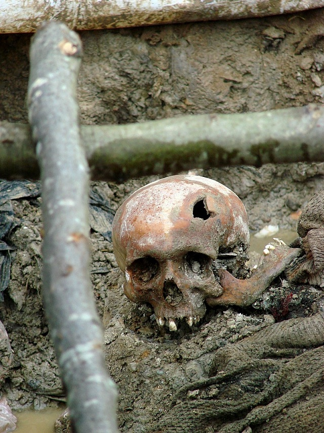 Lebka jedné zobětí srebrenického masakru, 1995