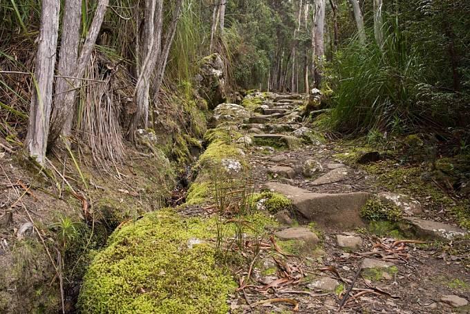 Cesta z vrcholu Mount Wellingtonu
