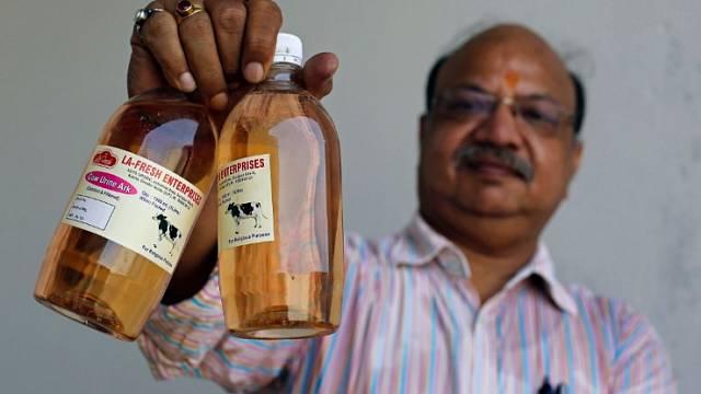 Destilovaná moč je v indické společnosti oblíbená.