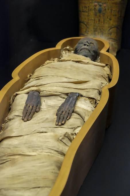 V mumiích byla objevena vajíčka zkamenělých schistosom.