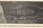 Pozůstatky egyptské mumie