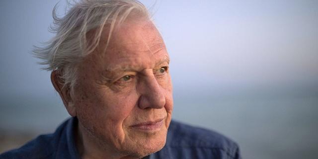 Sir David Attenborough letos slaví devadesátiny.