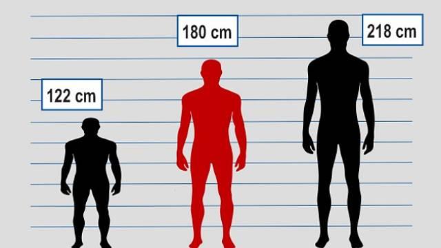 Adam Rainer měřil ve 31 letech 218 cm. Růst se nezastavoval.