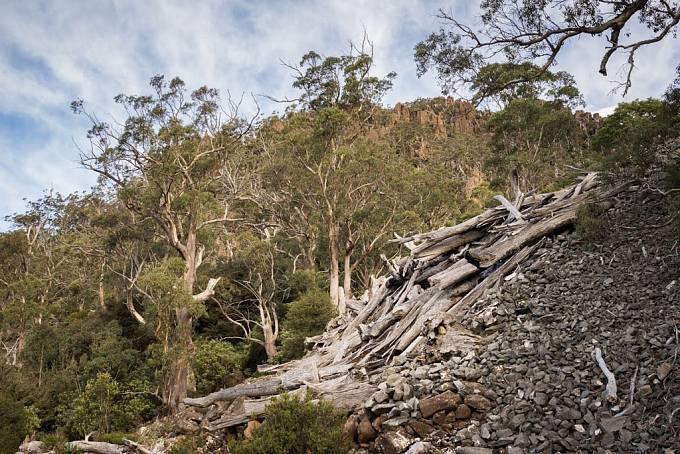 Region Central Plateau