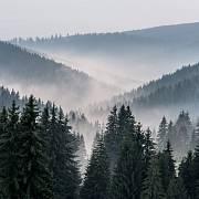 V roce 536 pokryla Evropu záhadná mlha.