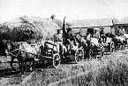 """Sovětské """"rudé vlaky"""" odvážejí obilí z Ukrajiny."""