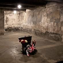 Nacistická plynová komora