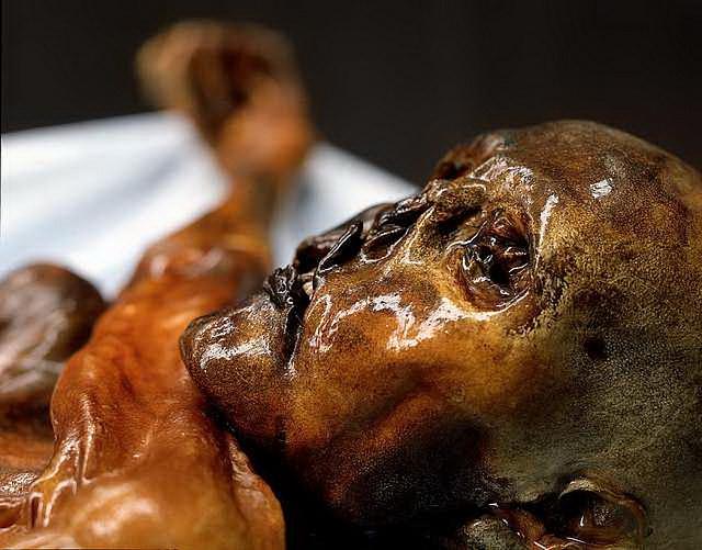 Ötzi byl v době smrti asi 45 let starý, měřil přibližně 165 cm a vážil 59 kg.