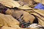 Epidemie cholery ve státě Zair (dnes Demokratická republika Kongo)