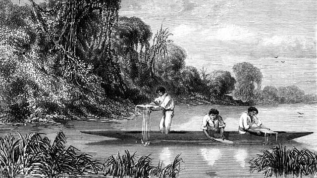 Lov candiru, Le Tour du Monde, 1865