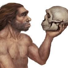 Neandertálské geny jsou spojeny s rizikem těžšího průběhu onemocnění Covid-19.
