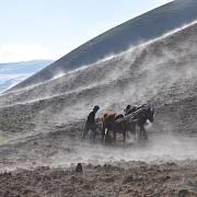 Hlavním zdrojem obživy většiny obyvatel Afghánistánu je zemědělství a chov dobytka, na kterém jsou zcela závislí.