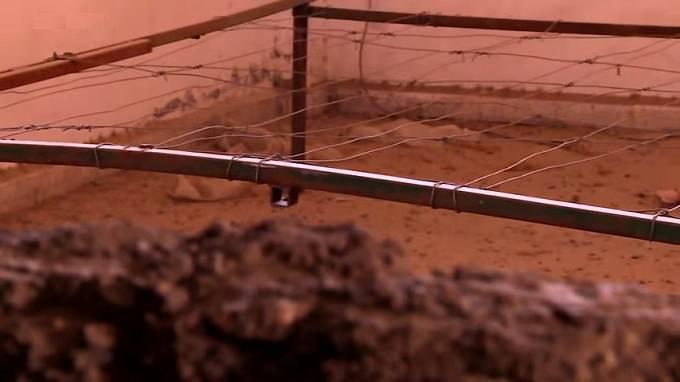 Lůžko z ostnatých drátů