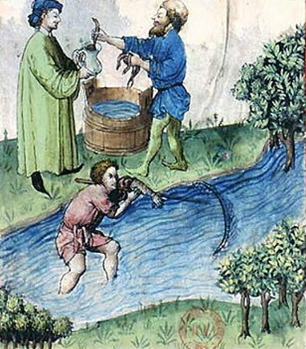 Ryby patřily k postním jídlům. Jedly se i mihule a sviňuchy.