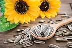 Doporučují se také různá semínka, například slunečnicová.