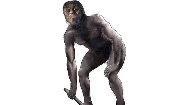 Australopitéci se přestěhovali ze stromů na zem, čímž mimo jiné způsobili, že neprospíme tolik času jako opice.
