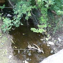 Lesní potok, který si vzal 4. července 1838 26 dětských životů