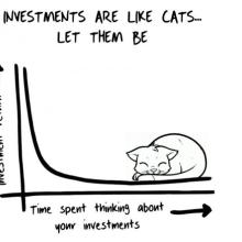 Peníze jsou jako kočky