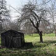 Jaro v Dvořákově sadu