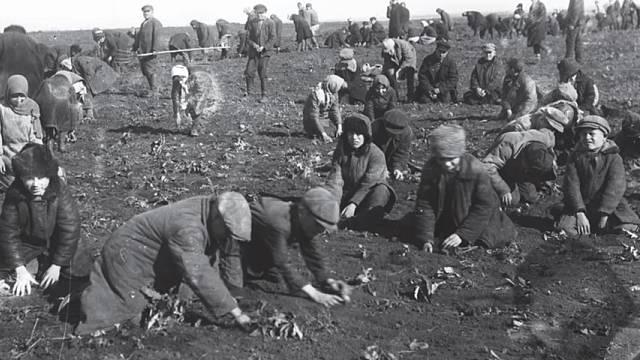 Hladomor na Ukrajině