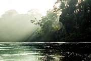 Povodí řeky Cononaco, kde Waorani žijí