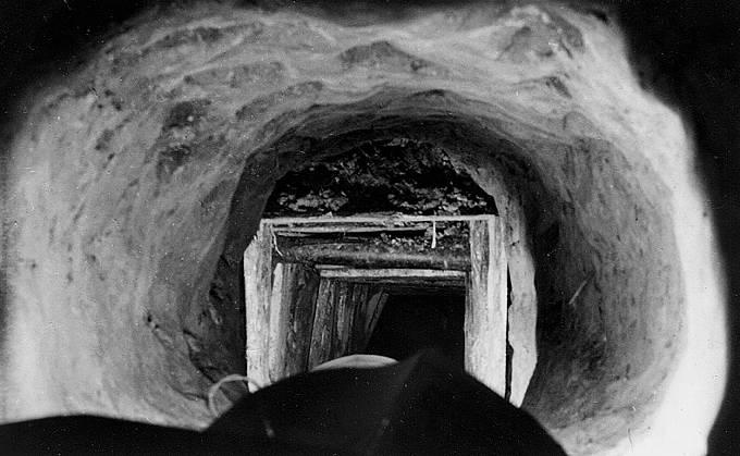 Tunel Harry